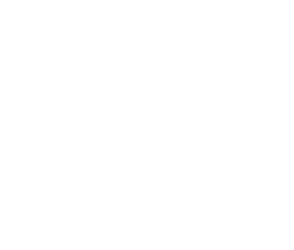 Topeka Ks Premium Web Design Logos Marketing Tinkering Owl
